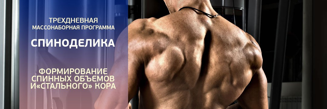 Mass Gain » For the Back: Mass and Strength