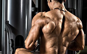 For the Back: Mass and Strength