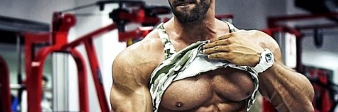 """Mass Gain » MEZOMORF-FIT: mass gain for a typical """"mesomorph"""""""